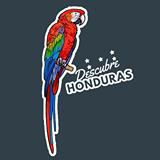 Oswald  Sachz (Descubre Honduras)